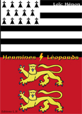 Hermines / Léopards